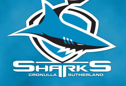 Shane Flanagan resigns as Sharks coach